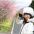 2011 武陵櫻花祭 303-3.jpg