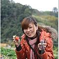 大湖草莓之旅 029.JPG
