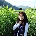 草坪頭&阿里山 120.JPG