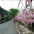 草坪頭&阿里山 040.JPG