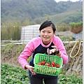 大湖草莓之旅 041.JPG