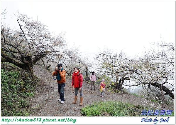 烏松崙賞梅 074.JPG