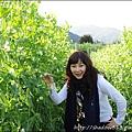 草坪頭&阿里山 115.JPG