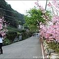 草坪頭&阿里山 052.JPG