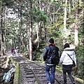 太平山之旅 327.JPG