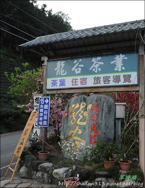 草坪頭&阿里山 109.JPG