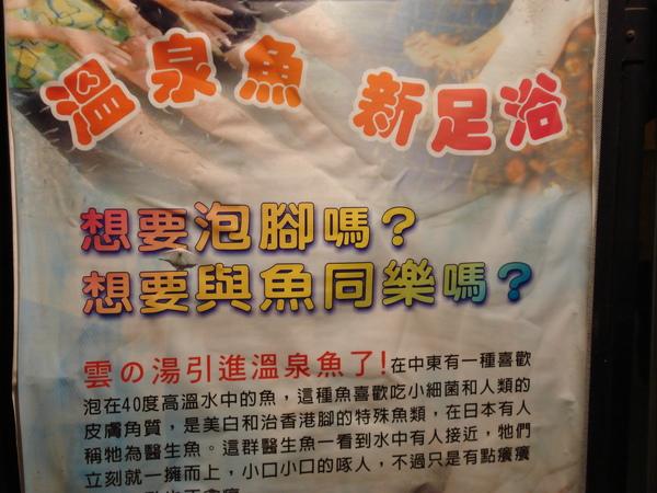 溫泉魚的介紹.jpg