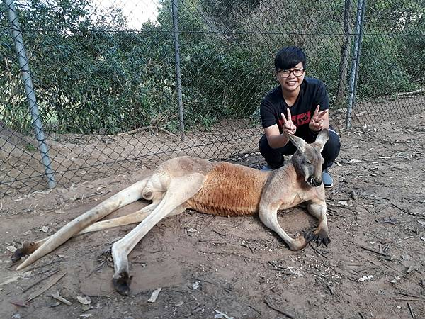 澳洲_170815_0015.jpg