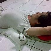 死GAY兔 自己跑去黏人家
