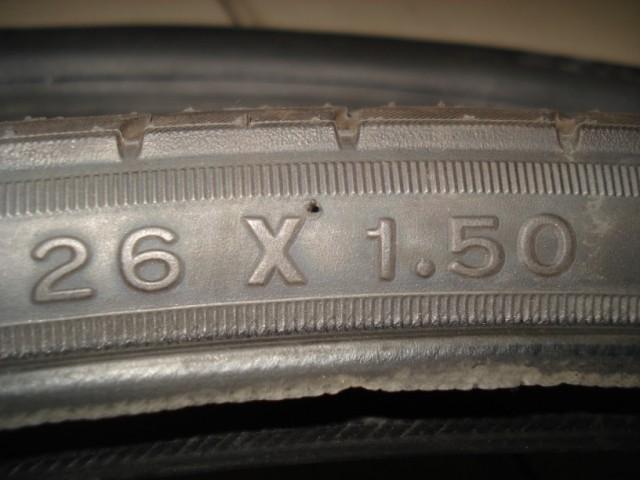 DSC09979.JPG