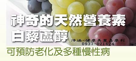 白藜蘆醇1