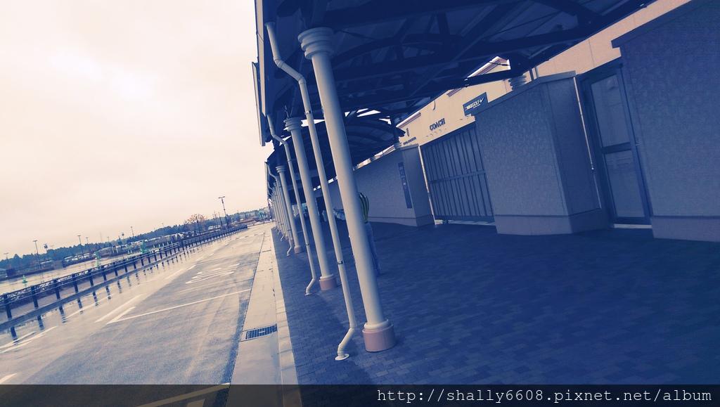 IMAG4506.jpg