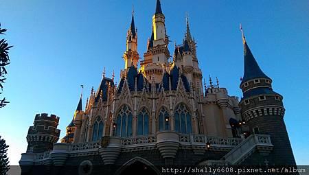 IMAG5215.jpg