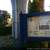 IMAG5470.jpg