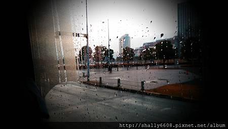 IMAG6154.jpg