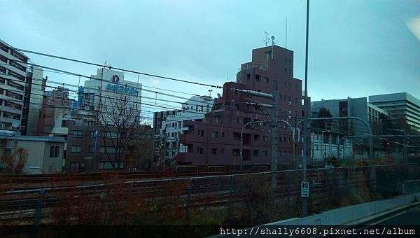 IMAG6255.jpg