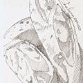 HB鉛筆素描的艋舺麵包.jpg