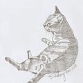 貓.2B鉛筆素描