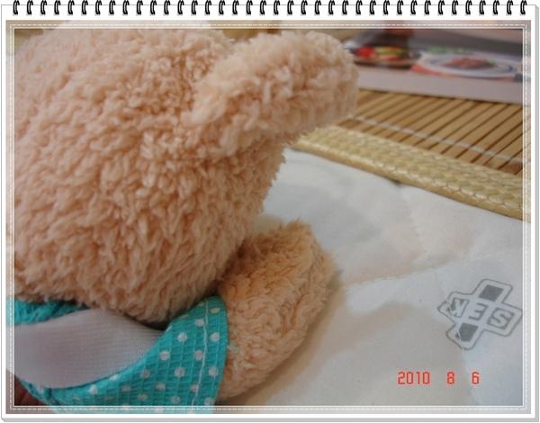 2010.08.06-5 來玩躲貓貓.JPG