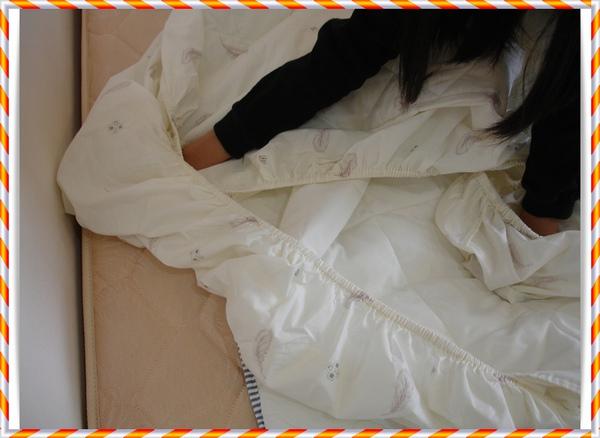2011.02.26 摺床罩 2.JPG