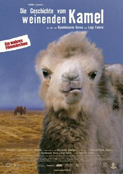 駱駝駱駝不要哭─沙鹿電影藝術館.jpg