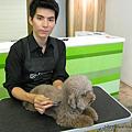 2015年04月23日台灣今天我最帥:寵物美容師小伍