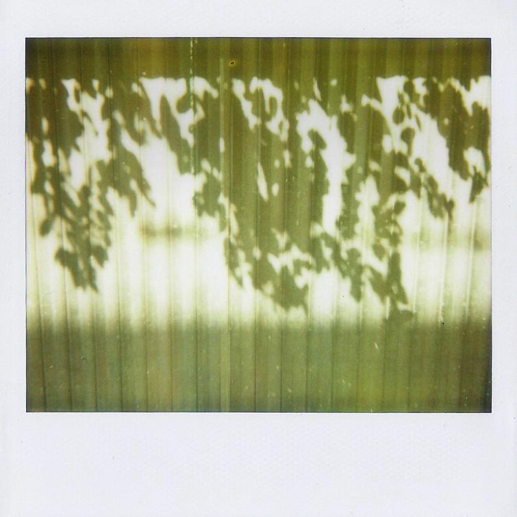 2011-11-1200-0001.jpg