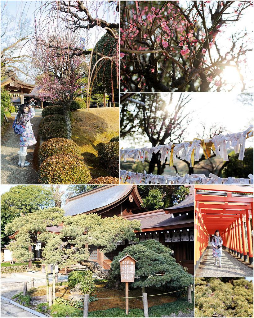 Kyushu01 003.jpg