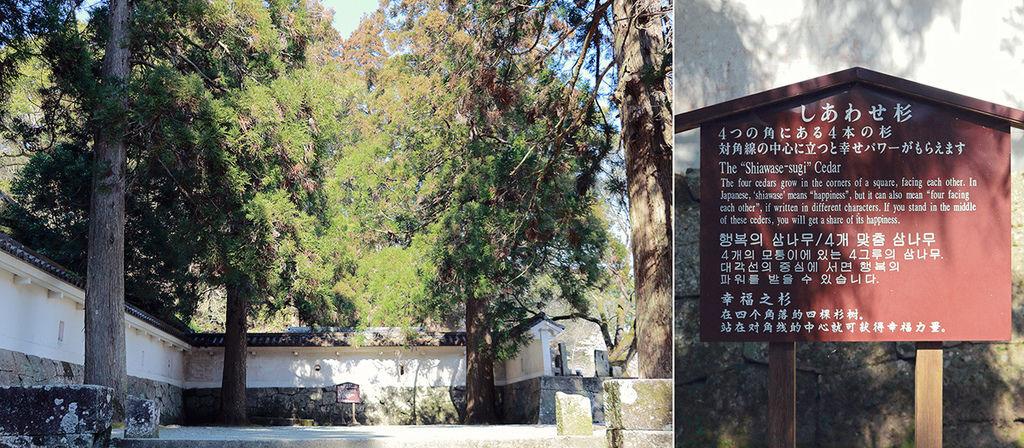 Kyushu03 009.jpg