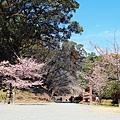 Kyushu03 014.JPG