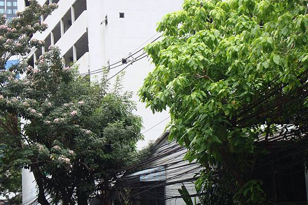 20190406曼谷第17次自助9日遊 195
