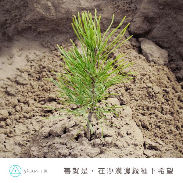 20140311_善就是在沙漠邊緣種下希望2