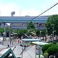 甲子園 (5)