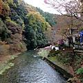 據說沿著清瀧川步道可以走到嵐山 沿途美景更是讚~