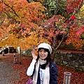 神護寺裡的楓葉很茂密