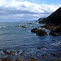 Marine World的特色就是整個園區都跟海連在一起
