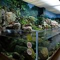 這個水族館的特色是可以近距離觀察各種生物
