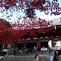 神護寺正殿