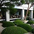 第二家喝茶的地方 可以欣賞苔庭