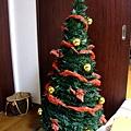 真理家的聖誕樹
