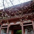 醍醐寺總門
