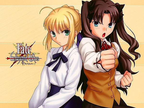 Fate_unlimited_codes-107.jpg