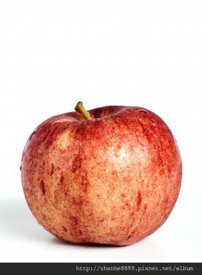 9109144_s紅蘋果
