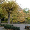 科隆 Am Stadtwald 假日酒店81.JPG
