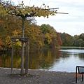 科隆 Am Stadtwald 假日酒店82.JPG