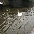 阿姆斯特丹運河87.JPG