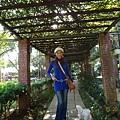 老爸後花園040.jpg