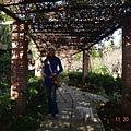 老爸後花園039.jpg