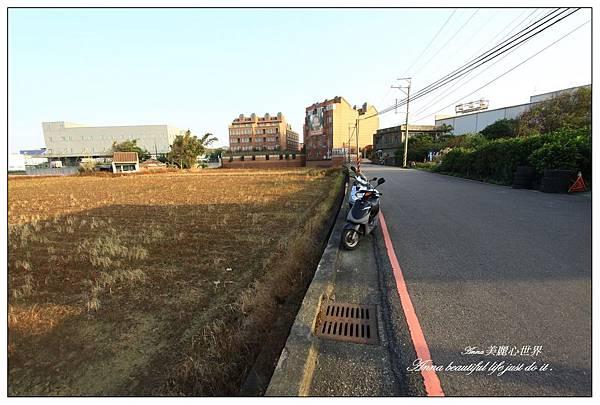蘆竹花海節153.JPG