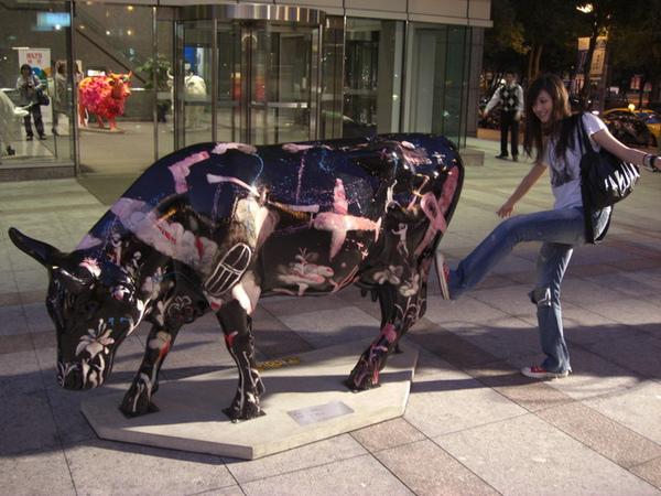 最近在路上遇到很多牛